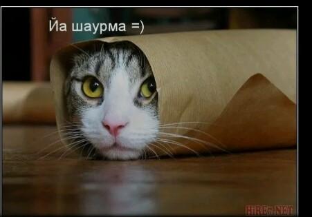 http://s7.uploads.ru/d2BL7.jpg