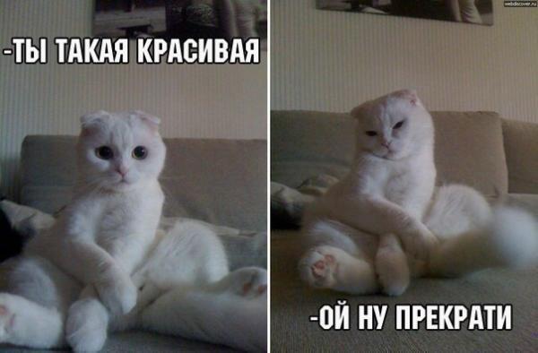http://s7.uploads.ru/dKL8n.jpg