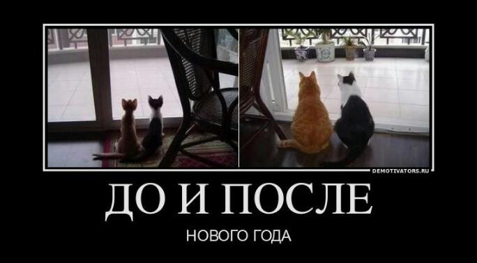 http://s7.uploads.ru/dU40Z.jpg