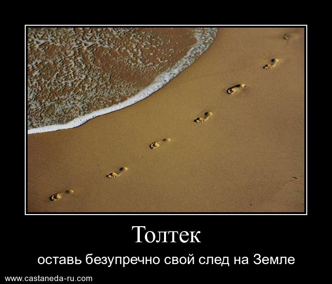 http://s7.uploads.ru/dVQGS.jpg