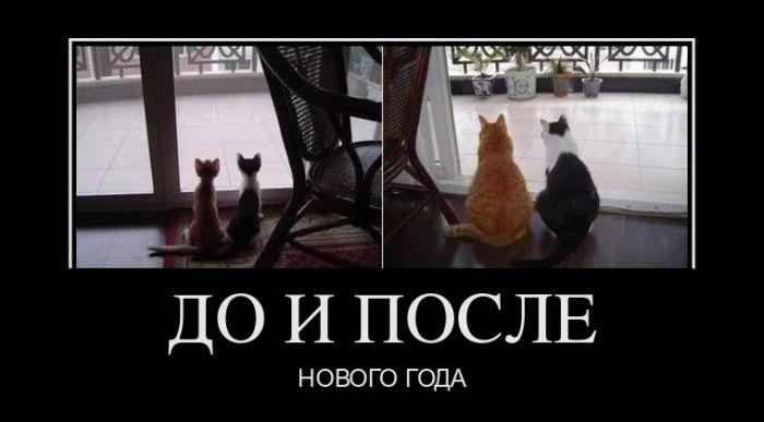 http://s7.uploads.ru/dpmzv.jpg