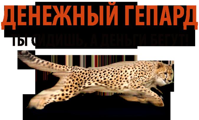 http://s7.uploads.ru/eKbd4.png