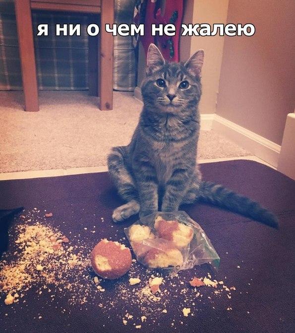 http://s7.uploads.ru/f5h6F.jpg