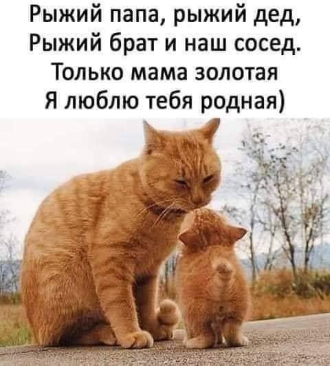 http://s7.uploads.ru/goMKG.jpg