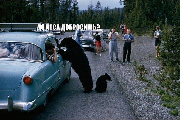 http://s7.uploads.ru/gqZXc.jpg