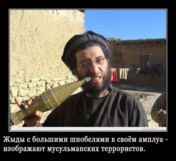 http://s7.uploads.ru/hjTsO.jpg