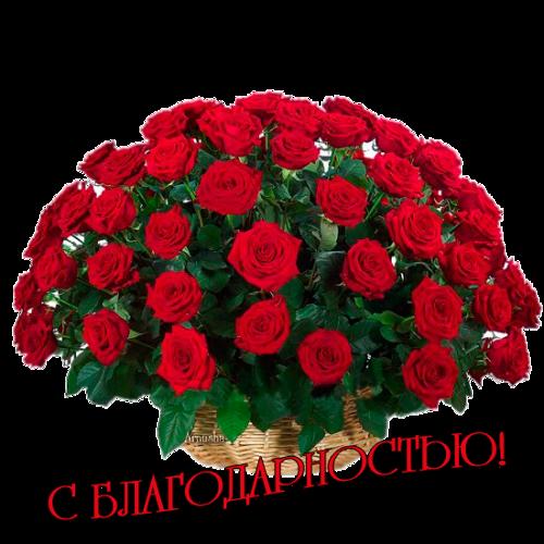 http://s7.uploads.ru/iDNbL.png