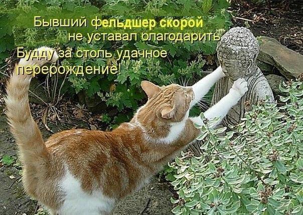 http://s7.uploads.ru/iXfJx.jpg