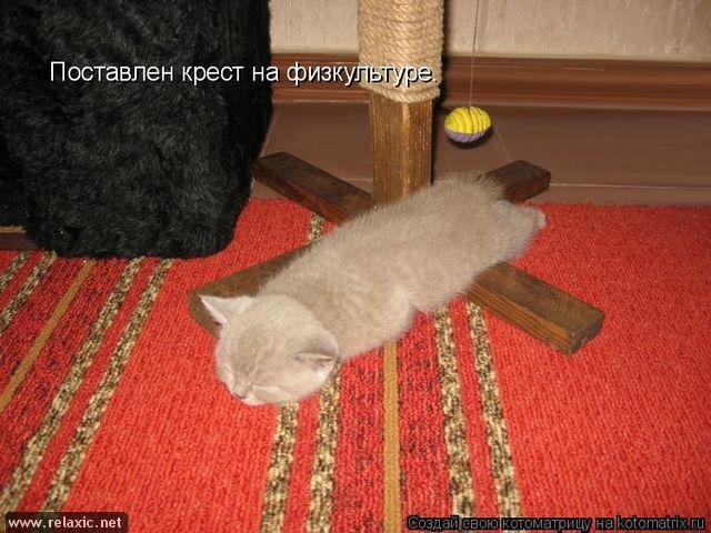 http://s7.uploads.ru/jL0vD.jpg