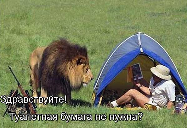 http://s7.uploads.ru/kq6tc.jpg