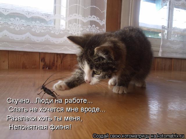http://s7.uploads.ru/krlC6.jpg