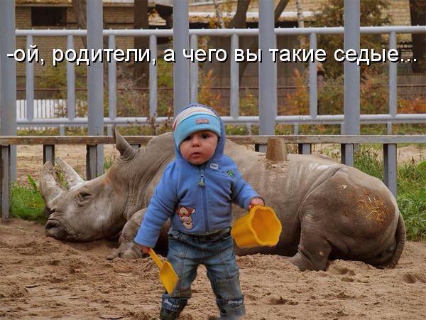 http://s7.uploads.ru/lEpOJ.jpg