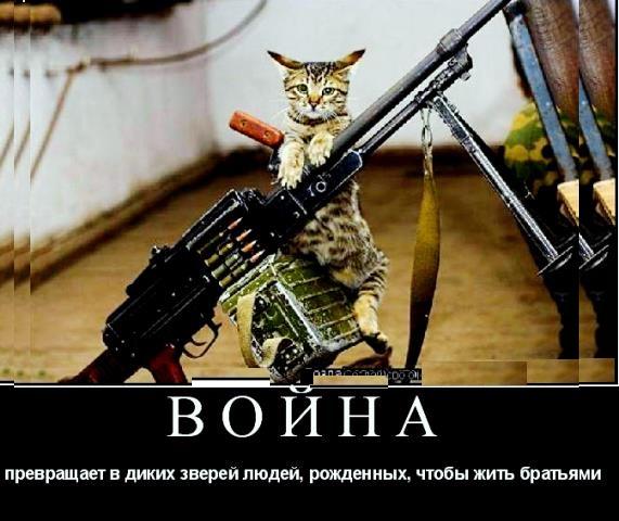 http://s7.uploads.ru/lKLhw.jpg