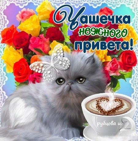 http://s7.uploads.ru/lrjRF.jpg