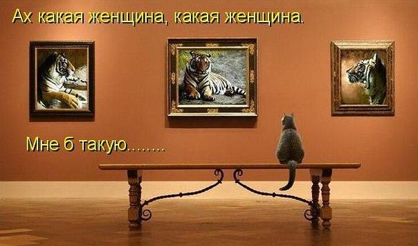 http://s7.uploads.ru/mVYqS.jpg