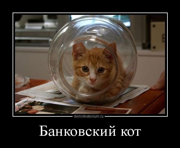 http://s7.uploads.ru/oONd2.jpg