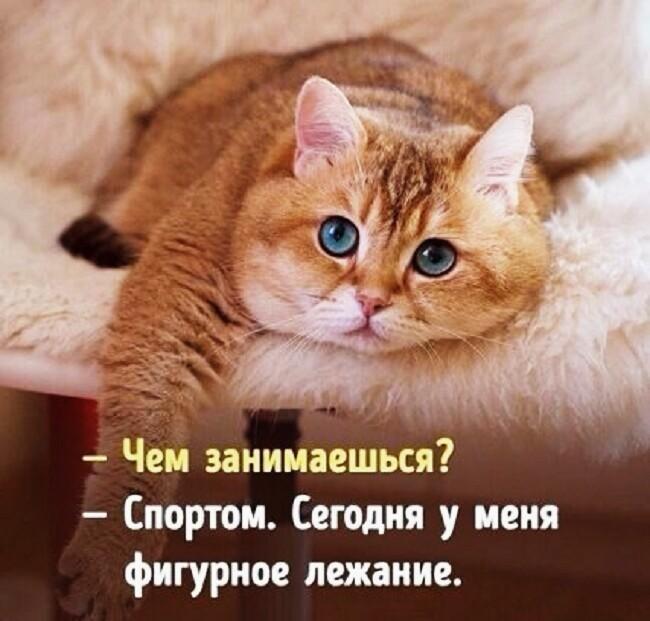 http://s7.uploads.ru/oVOT9.jpg