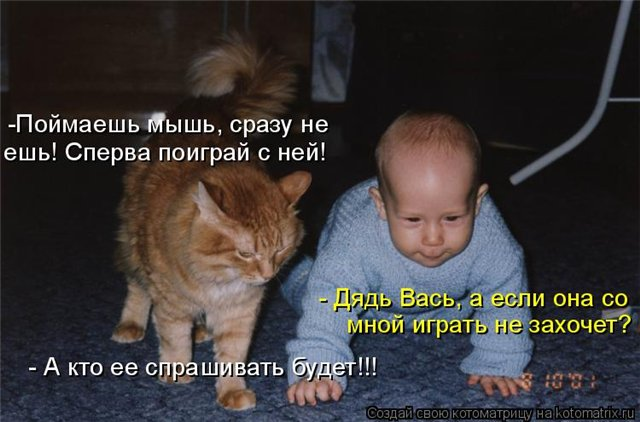 http://s7.uploads.ru/ozbBG.jpg