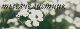 http://s7.uploads.ru/pNXur.jpg