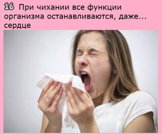 http://s7.uploads.ru/puKU9.jpg