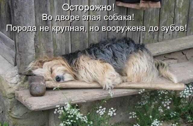 http://s7.uploads.ru/pzG7g.jpg