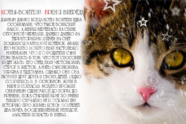 http://s7.uploads.ru/r8jHa.jpg