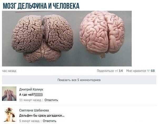 http://s7.uploads.ru/spn5g.jpg