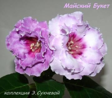 http://s7.uploads.ru/t/0HahI.jpg