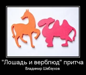 http://s7.uploads.ru/t/0Xxj2.jpg