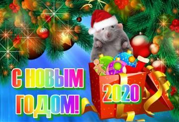 http://s7.uploads.ru/t/1uxmr.jpg