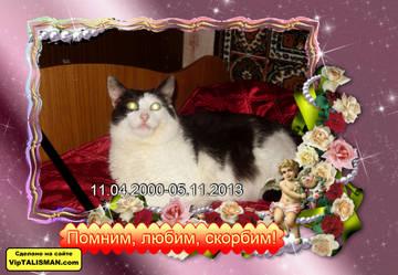 http://s7.uploads.ru/t/2ZuDW.jpg