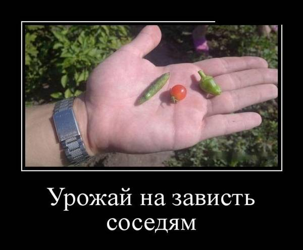 http://s7.uploads.ru/t/3946B.jpg