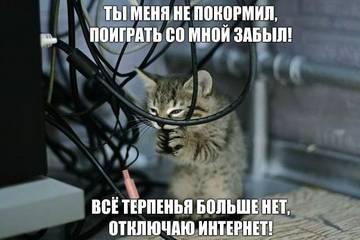 http://s7.uploads.ru/t/3Shay.jpg