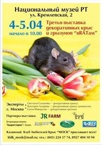 http://s7.uploads.ru/t/3gSMQ.jpg