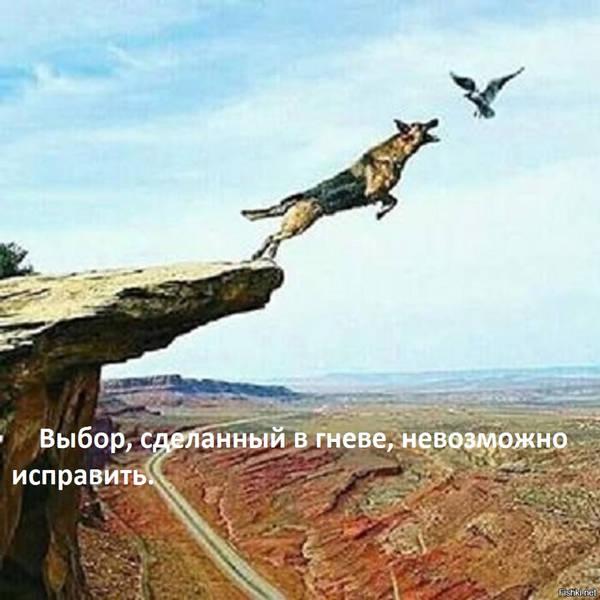 http://s7.uploads.ru/t/3xQlA.jpg
