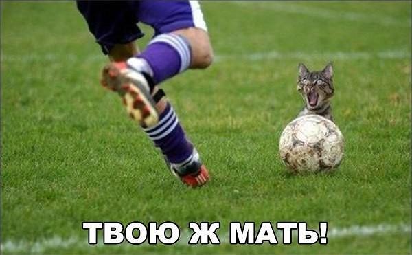 http://s7.uploads.ru/t/49FEa.jpg