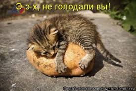 http://s7.uploads.ru/t/4NHaG.jpg