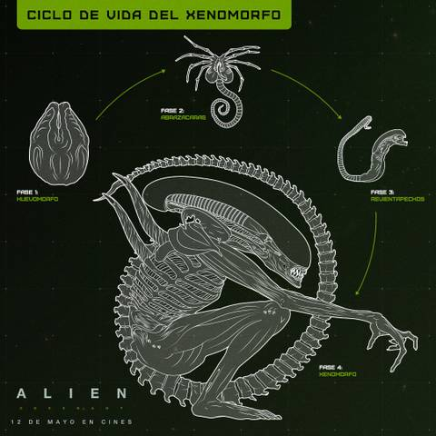 «Чужой: Завет»  Alien: Covenant