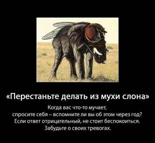 http://s7.uploads.ru/t/4bigS.jpg