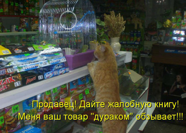 http://s7.uploads.ru/t/4jY6D.jpg