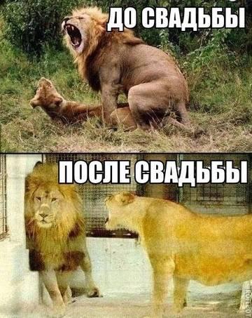 http://s7.uploads.ru/t/4moCs.jpg