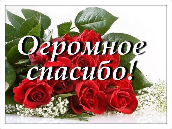 http://s7.uploads.ru/t/51qih.jpg
