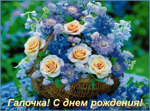 http://s7.uploads.ru/t/5HSKq.jpg