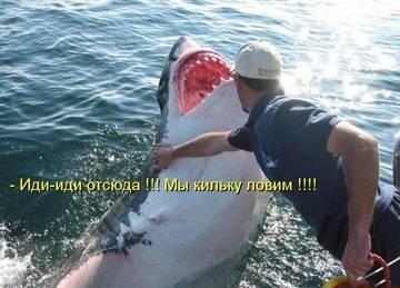 http://s7.uploads.ru/t/5npo3.jpg