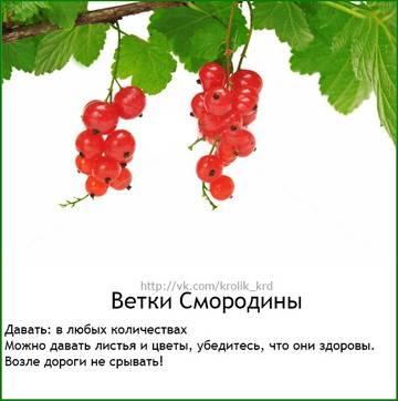 http://s7.uploads.ru/t/61hMC.jpg