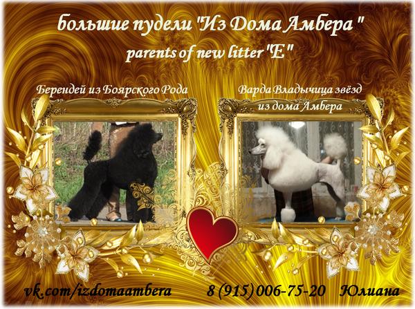 http://s7.uploads.ru/t/64ATm.png