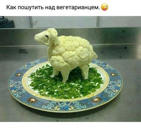 http://s7.uploads.ru/t/6KbPG.jpg
