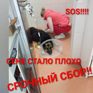 http://s7.uploads.ru/t/6xYFU.jpg