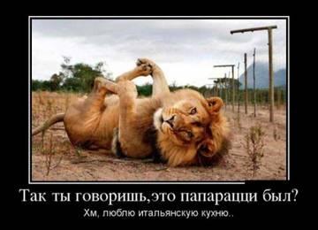 http://s7.uploads.ru/t/6yhOp.jpg