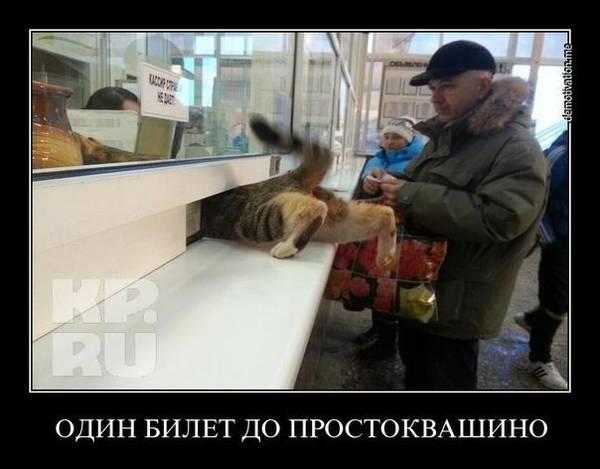 http://s7.uploads.ru/t/70EbB.jpg